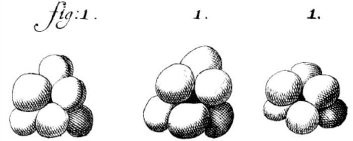 yeast sketch